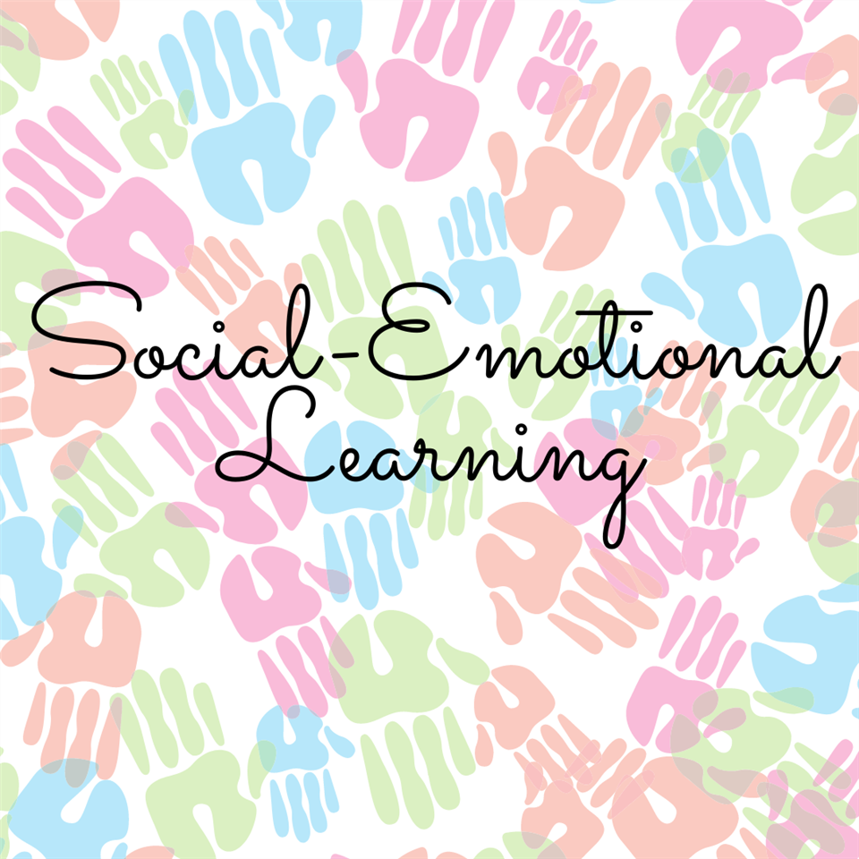 Student Competencies in Social and Emotional Learning Survey